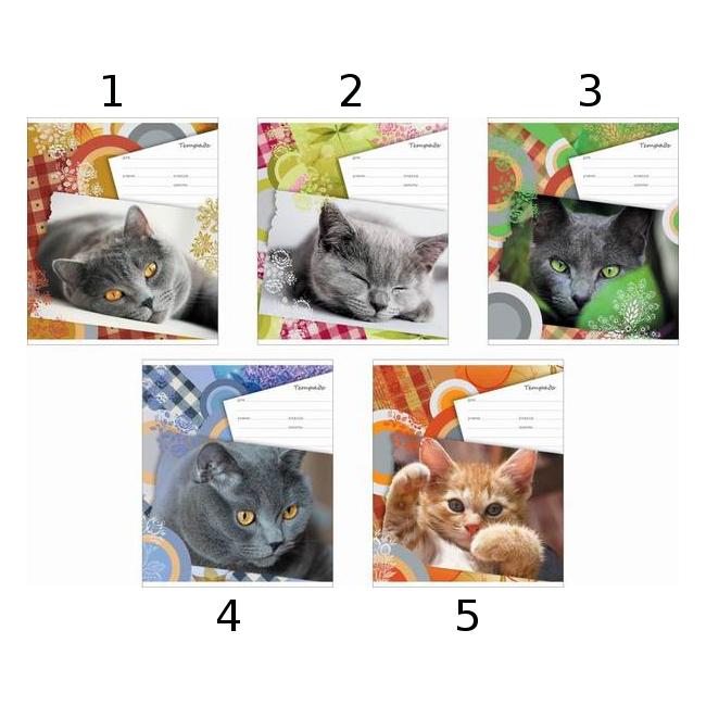 Полиграфика Тетрадь 18 листов Линейка «Lazy Kitten»