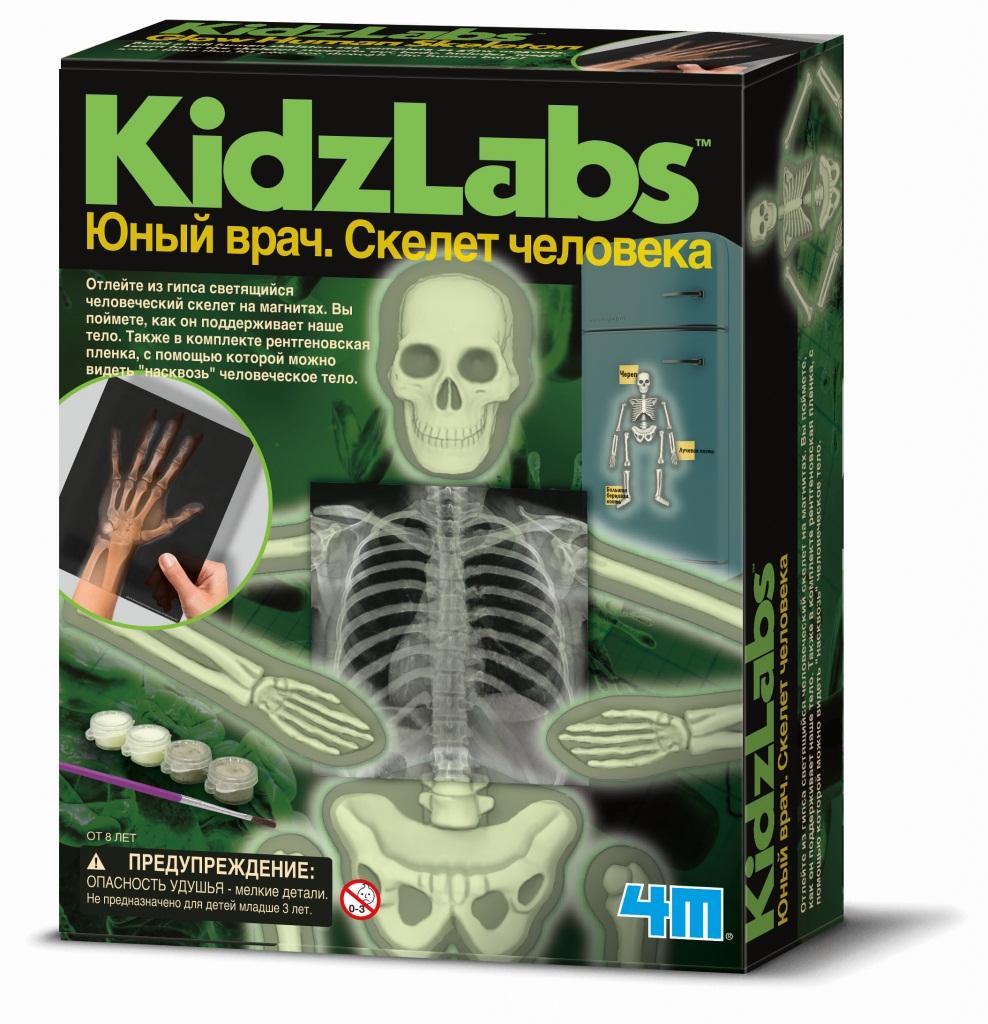 Игровой набор - Юный врач - Скелет человекаНаборы доктора детские<br>Игровой набор - Юный врач - Скелет человека<br>