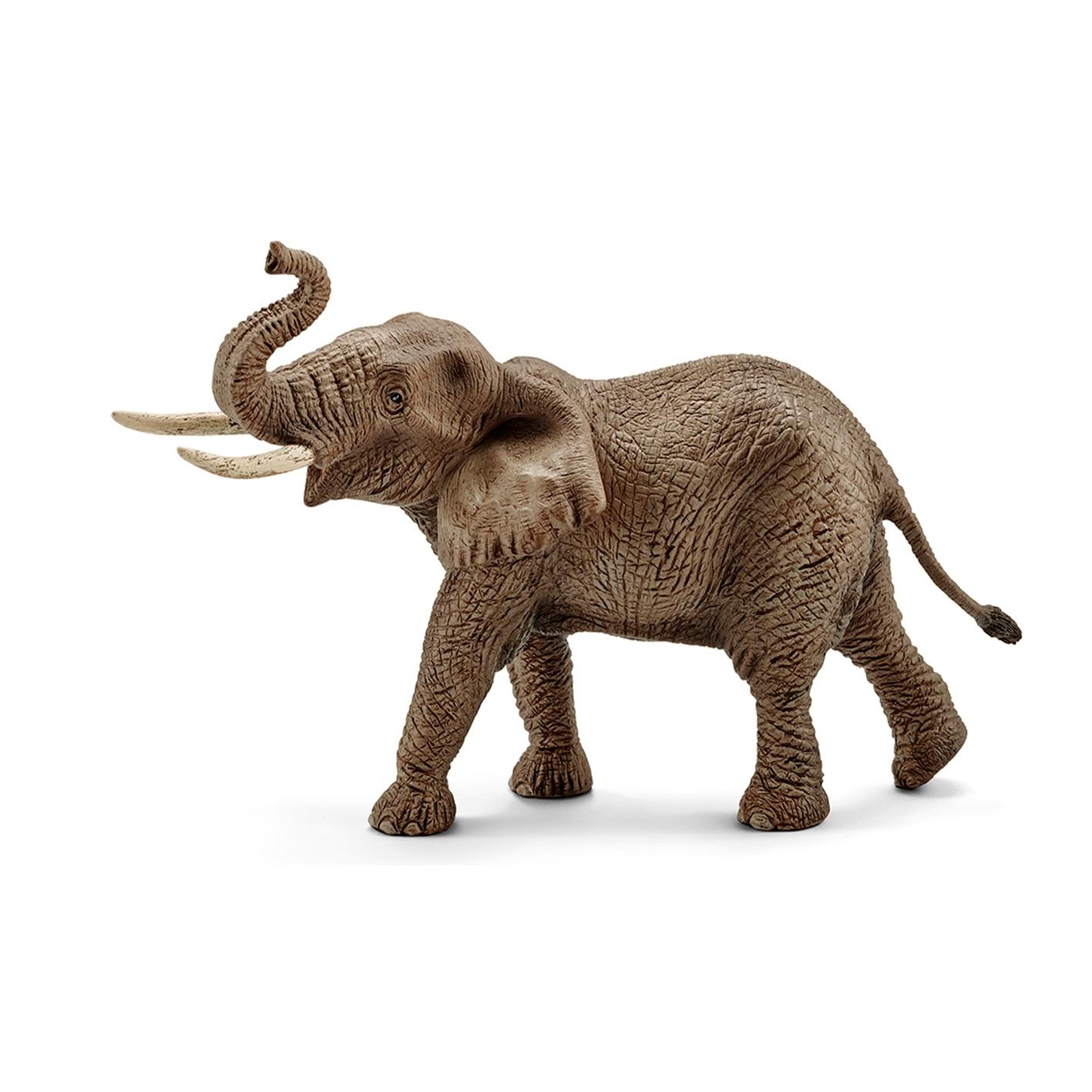 Купить Фигурка - Африканский слон, самец, Schleich