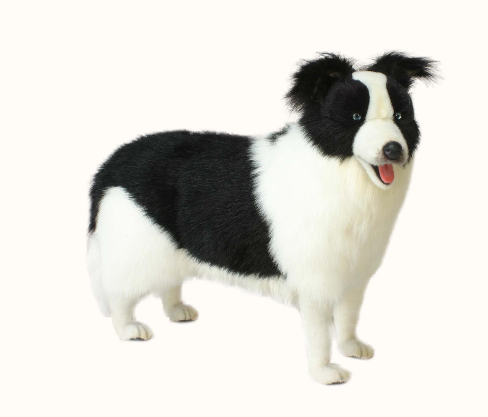 Мягкая игрушка - Собака породы Бордер Колли, 80 смСобаки<br>Мягкая игрушка - Собака породы Бордер Колли, 80 см<br>