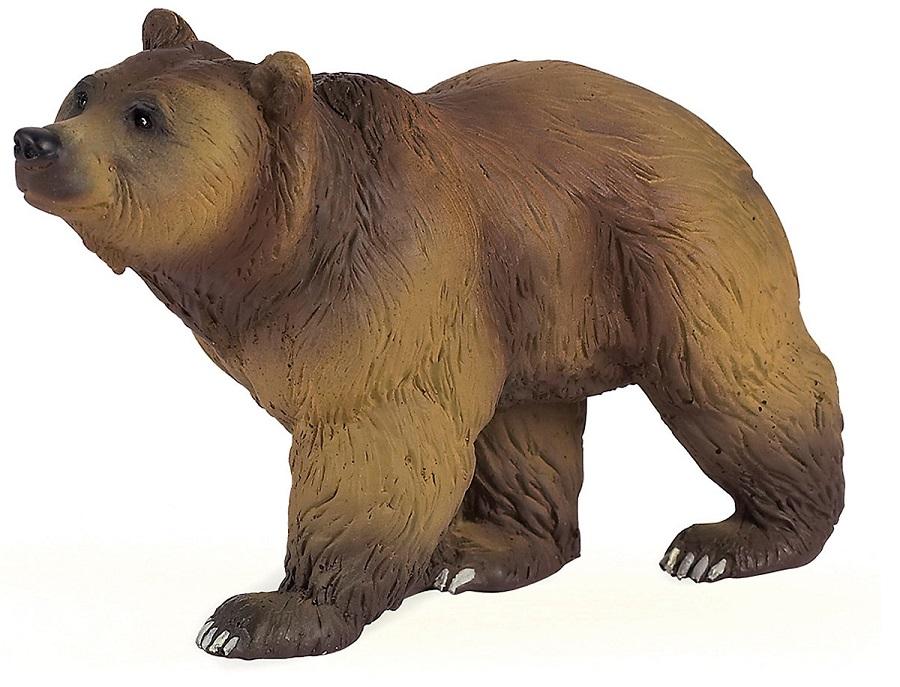 Картинки для, картинка про медведя для детей