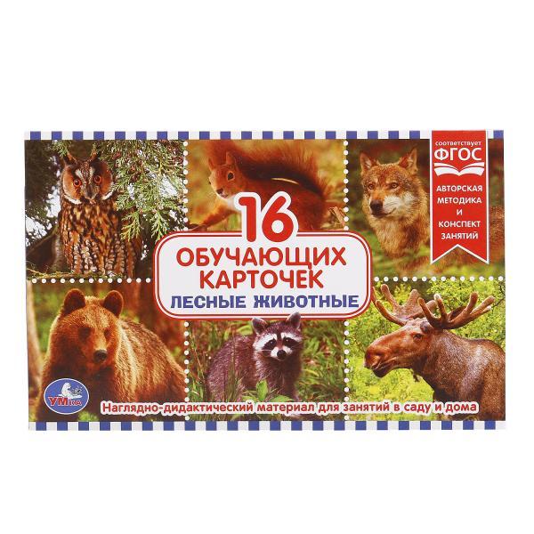 Карточки в папке - Лесные животныеРазвивающие пособия и умные карточки<br>Карточки в папке - Лесные животные<br>