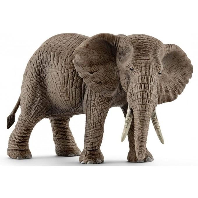 Купить Фигурка - Африканский слон, самка, Schleich