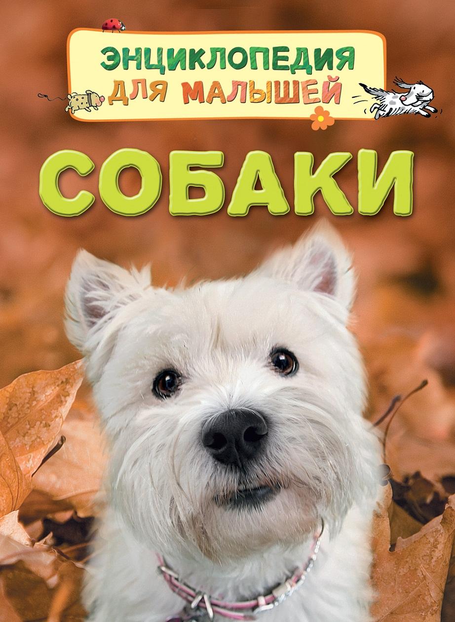 Энциклопедия для малышей - СобакиДля малышей в картинках<br>Энциклопедия для малышей - Собаки<br>
