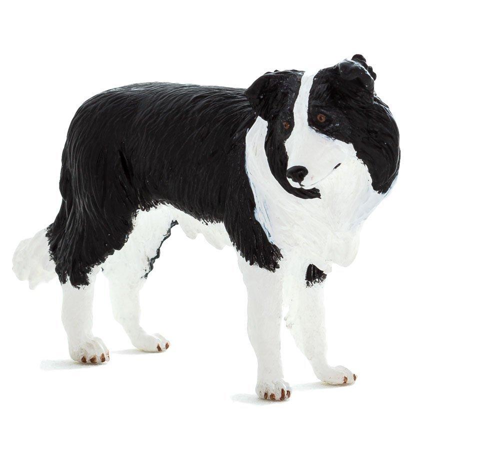 Бордер-коллиСобаки и щенки (Dogs &amp; Puppies)<br>Бордер-колли<br>