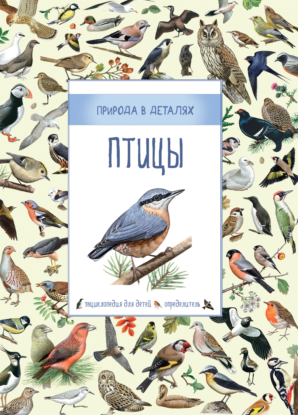 Энциклопедия для детей - Птицы - Природа в деталяхДля детей старшего возраста<br>Энциклопедия для детей - Птицы - Природа в деталях<br>