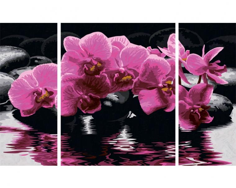 Набор для детского творчества – Триптих Орхидея, 50х80смРаскраски по номерам Schipper<br>Набор для детского творчества – Триптих Орхидея, 50х80см<br>
