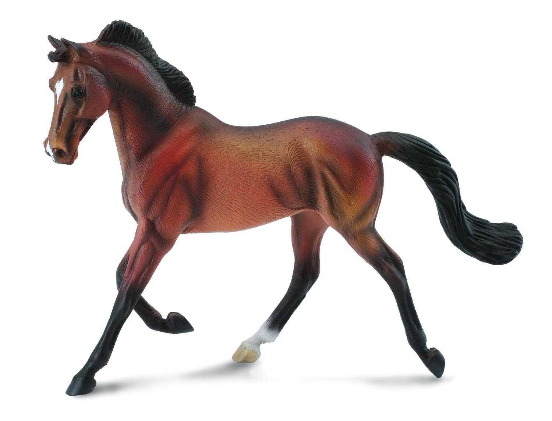 Чистокровная гнедая кобылаЛошади (Horse)<br>Чистокровная гнедая кобыла<br>