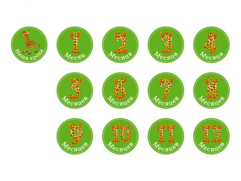 Купить Набор стикеров Stick'n Click - Жирафы, Happy line