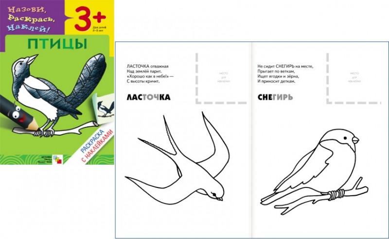Купить Раскраска с наклейками – Птицы, Мозаика-Синтез