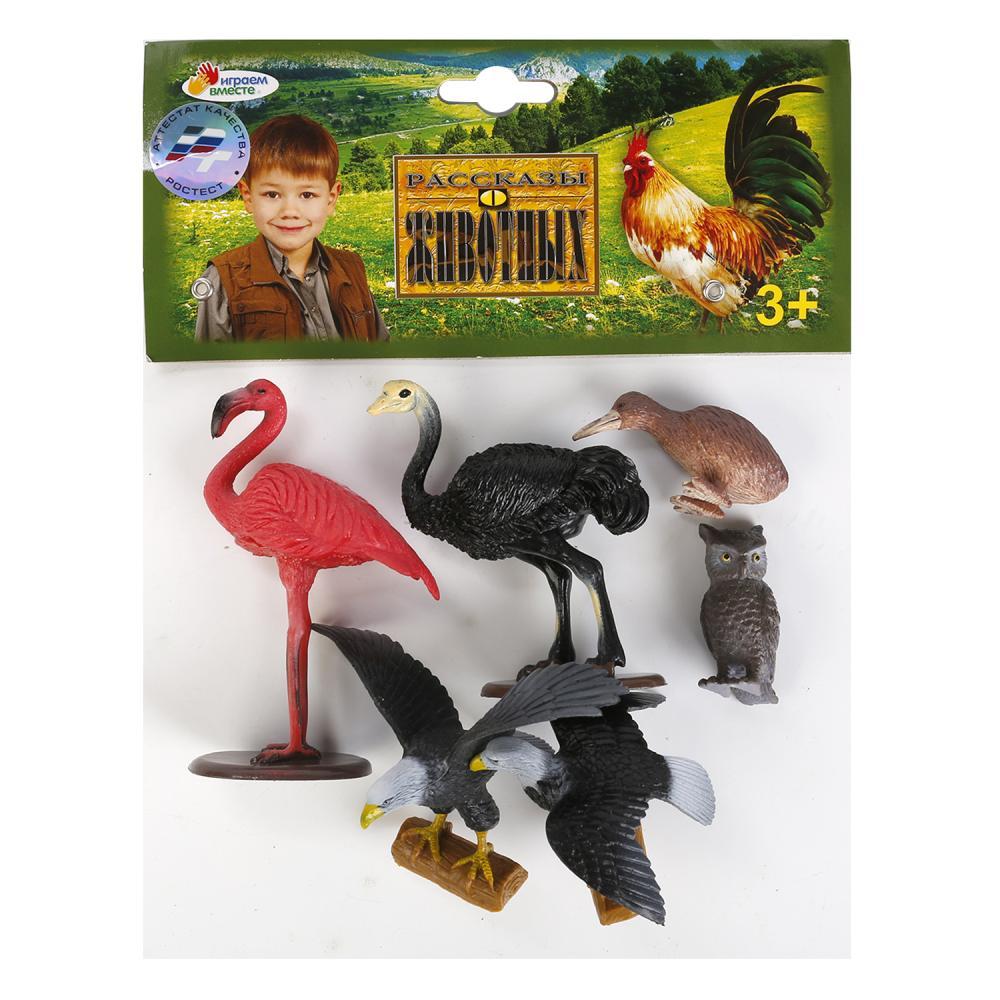 Купить Набор из 6-и птиц: дикие и домашние, Играем вместе