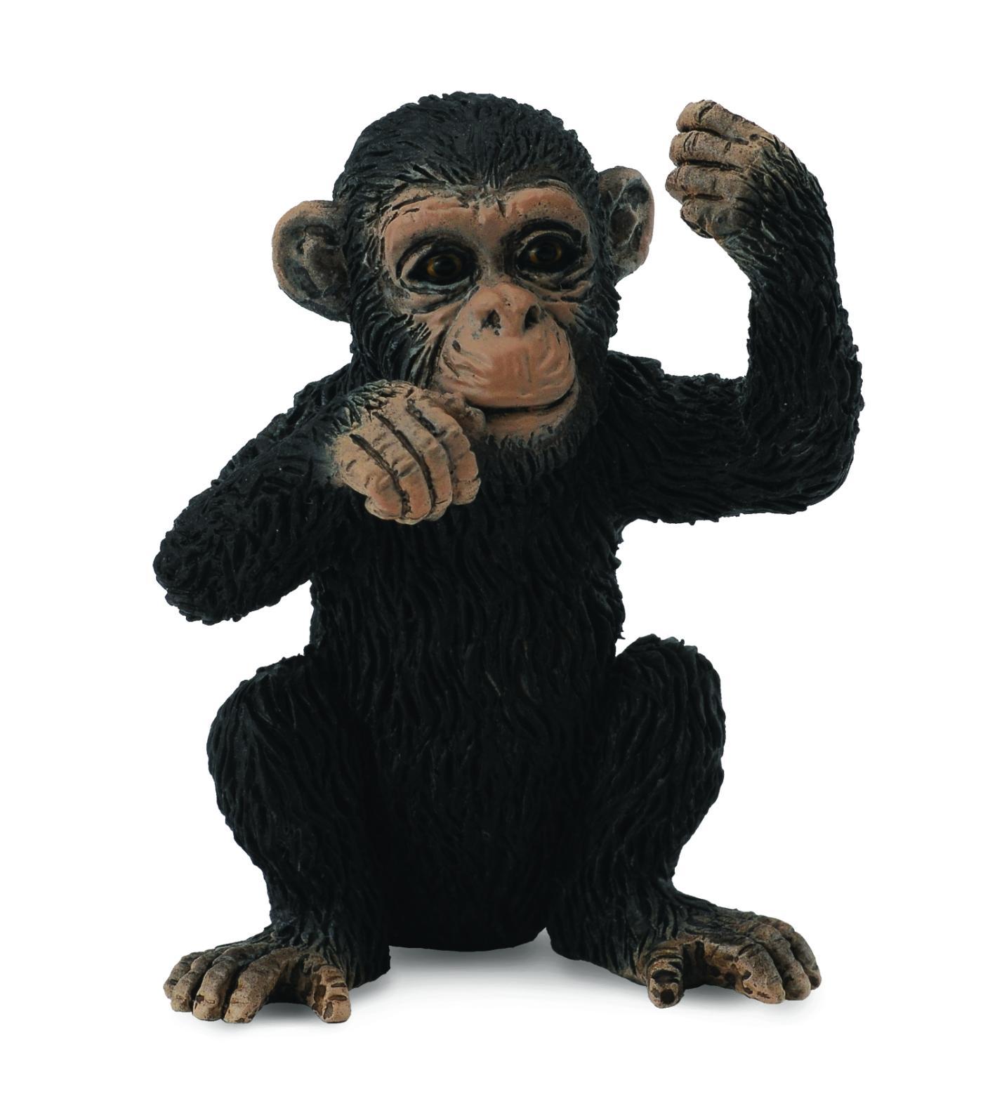 Детеныш шимпанзе, SДикая природа (Wildlife)<br>Детеныш шимпанзе, S<br>