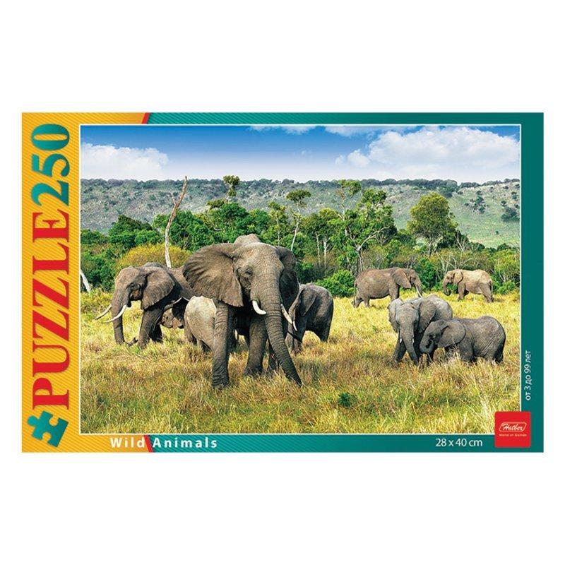 Пазлы 250 элементов – Слоны в саванне фото
