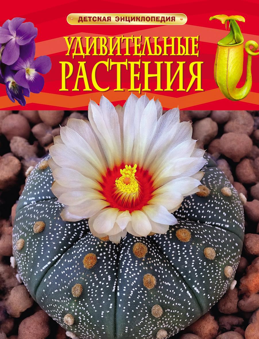 картинка Энциклопедия «Удивительные растения» от магазина Bebikam.ru