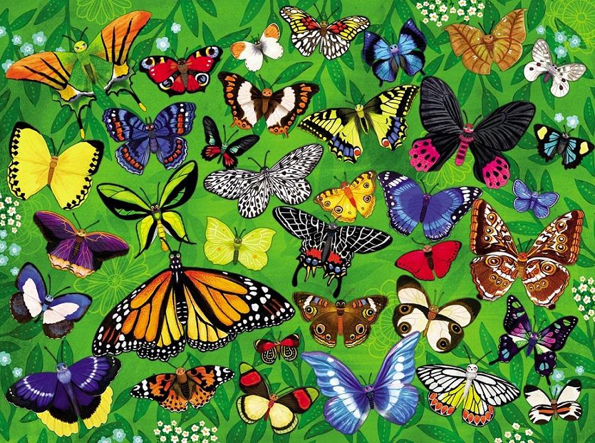 Купить Пазл - Бабочки из серии 36 Животных, 300 деталей, Crocodile Creek