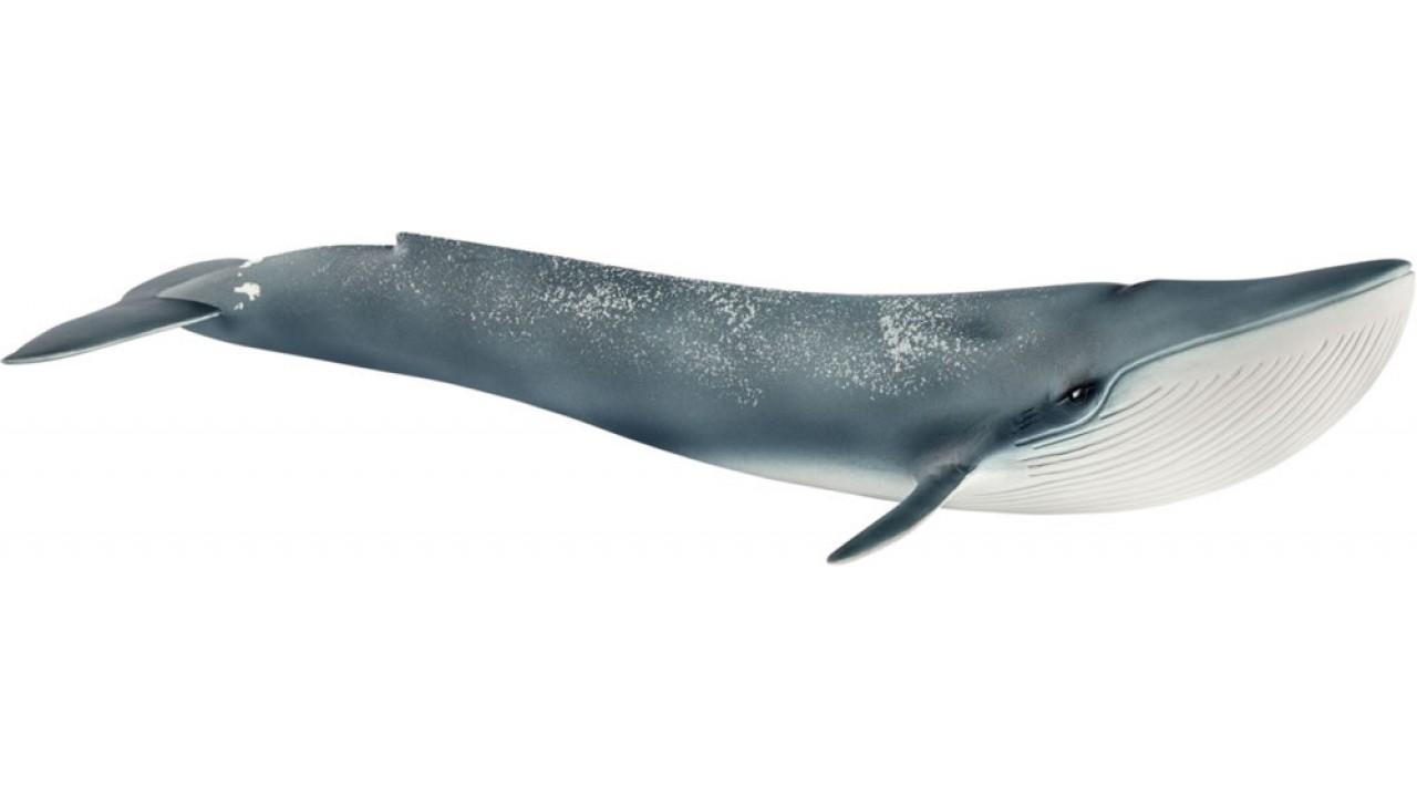 Купить Фигурка - Голубой кит, размер 27 х 10 х 5 см., Schleich