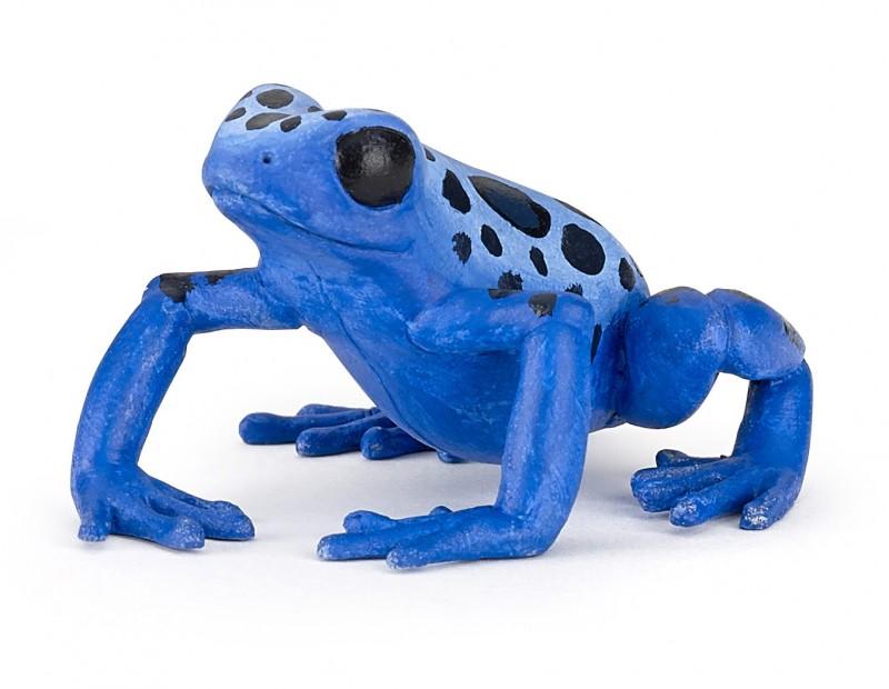 Экваториальная синяя лягушкаДикая природа (Wildlife)<br>Экваториальная синяя лягушка<br>