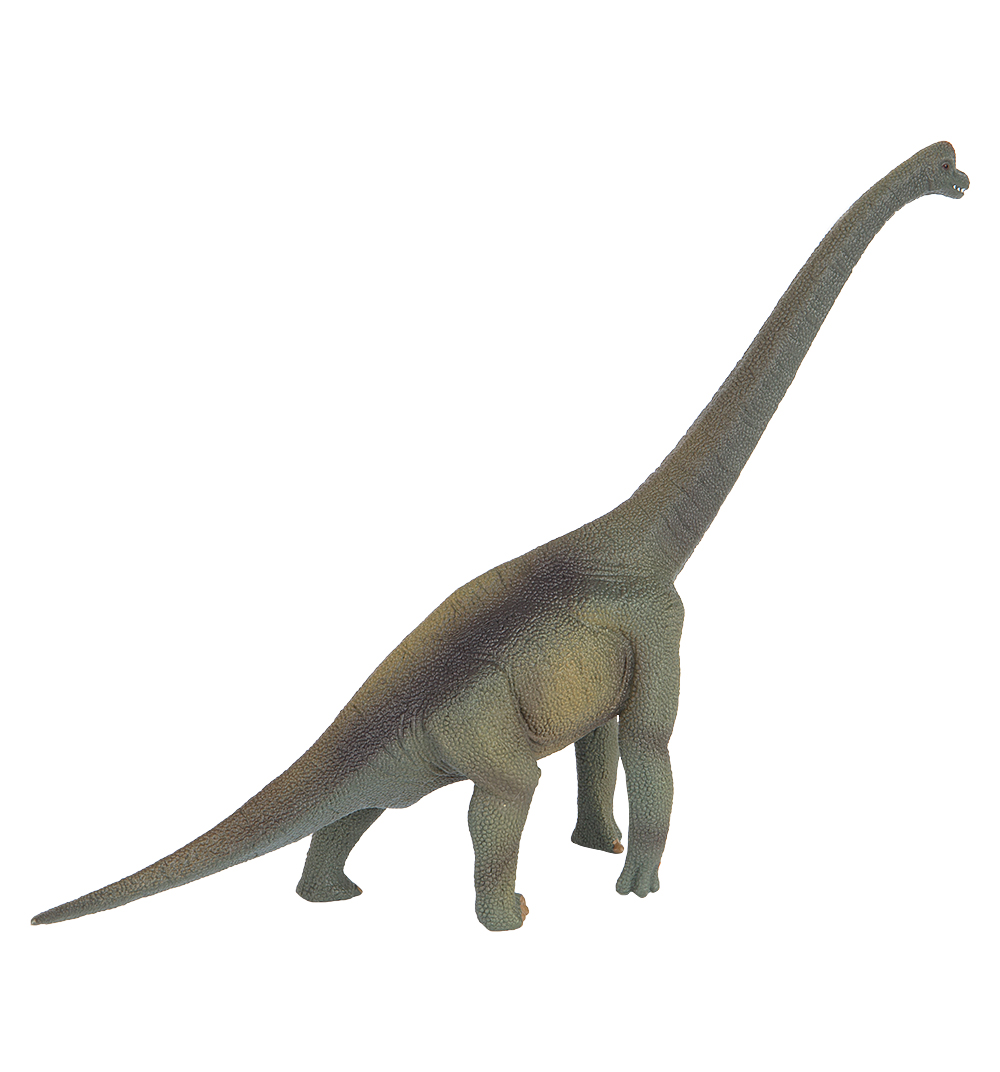 брахиозавр фото и описание более изготовить хлеба