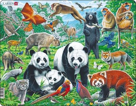 Пазлы: дикие животные
