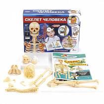 Набор для опытов Скелет человека- серия Маленький ученый (Играем вместе, TXL-117-Rsim)